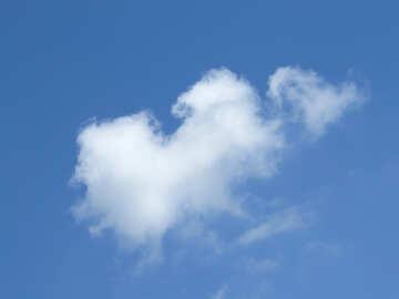 Cloud №31550