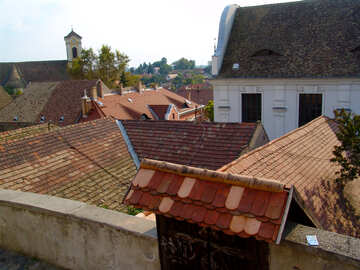 Tile roofs №31769