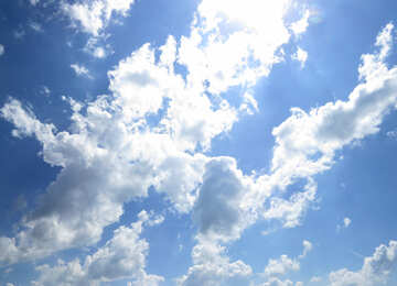 Sunny skies №31595