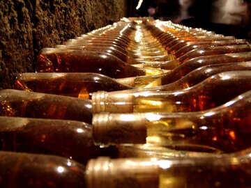 Wine №31691