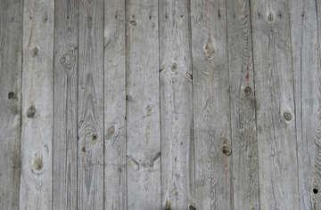 Wood planks texture №31311