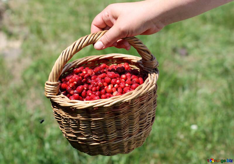 Basket of strawberries №31485