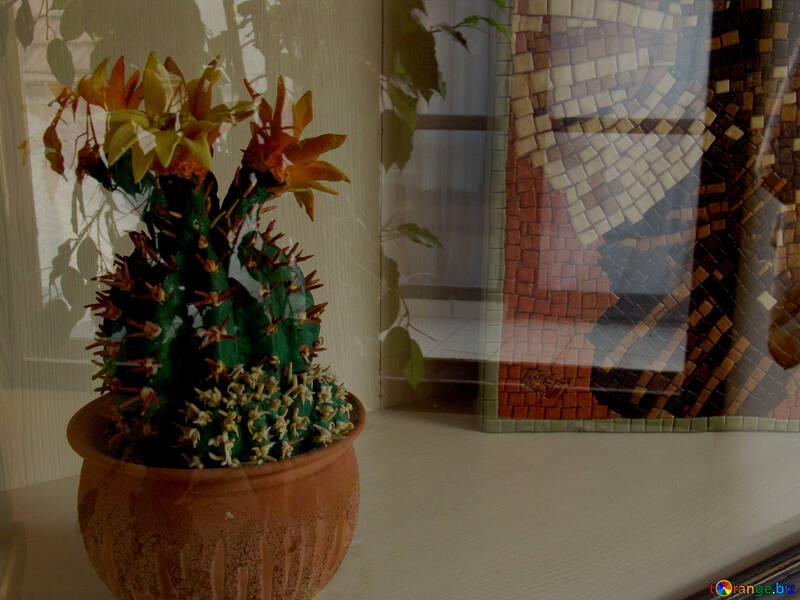 Cactus from marzipan №31729