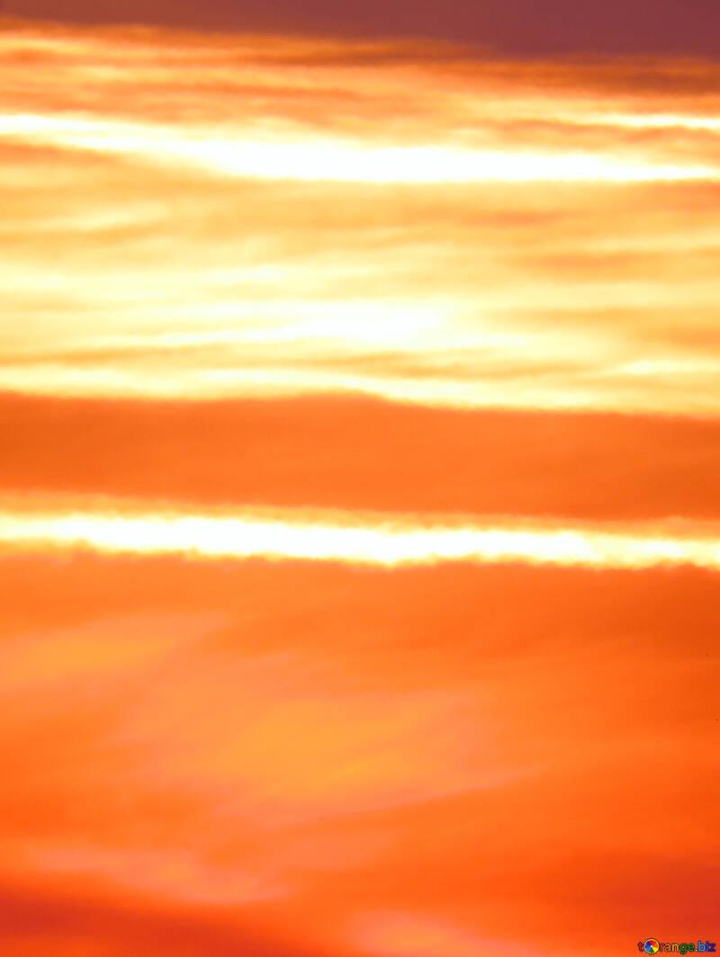 Golden sunset №31613