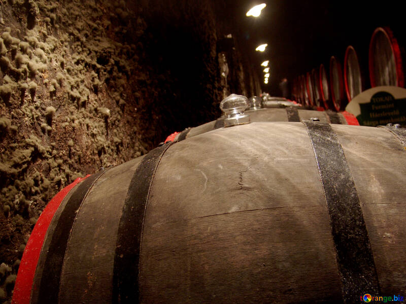 Barrels of wine in the cellar №31695