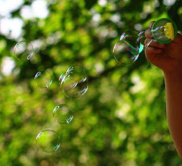Soap bubbles  №32970