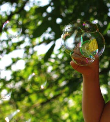 Soap bubbles  №32973