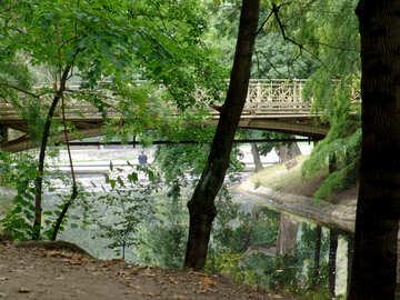 The bridge in the Park №32021