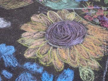 Flower child`s drawing on asphalt №32604