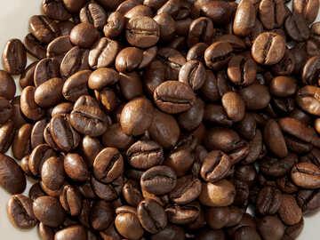 Kaffeebohnen №32243