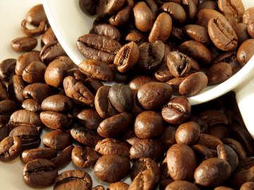 Der beste Kaffee №32284