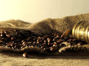 Fresh coffee №32256