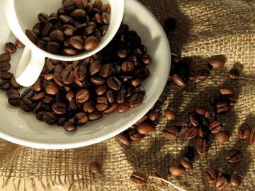Kaffee in Körner №32276
