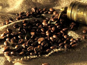 Gemahlenen Kaffee №32260