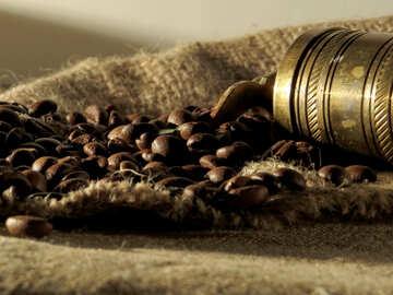 Geschichte des Kaffees №32258