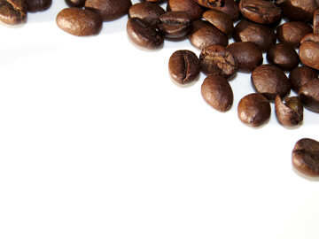 Coffee beans on the background №32288