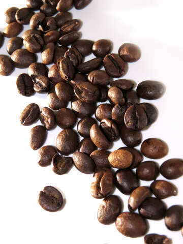 Coffee grains on white background №32286