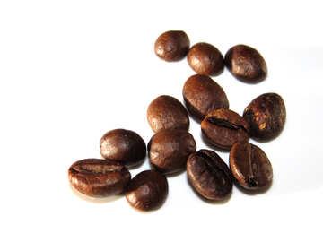 White beans №32301
