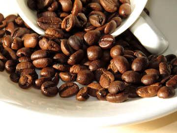 Bio Kaffeebohnen №32279