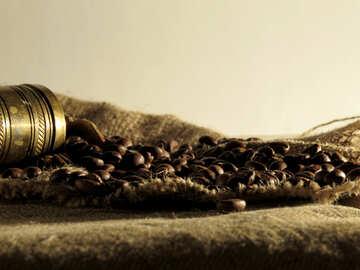 Kaffeeproduktion №32257