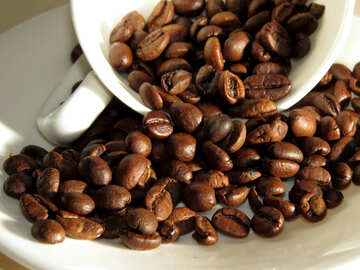 Roasted coffee beans №32280