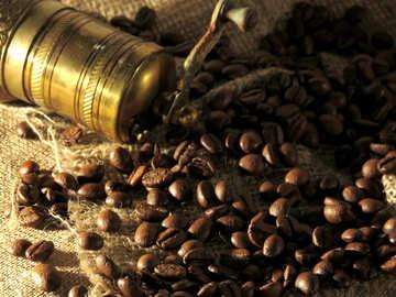 Der Wert des Kaffees №32252
