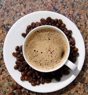 Tazza di caffè №32221