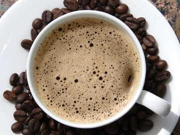 Coffee with Crema №32220