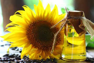 Sunflower oil №32726