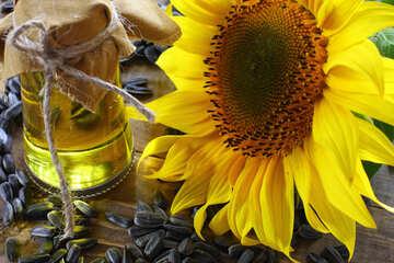 Crude sunflower oil №32738