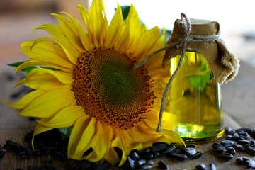 Refined sunflower oil №32721