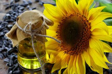 Sunflower seed oil №32742