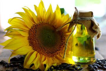 Vegetable oil №32718