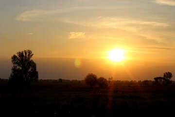 Sunset №32456