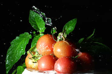 Clean the tomatoes №32865