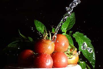 Fresh tomatoes №32861