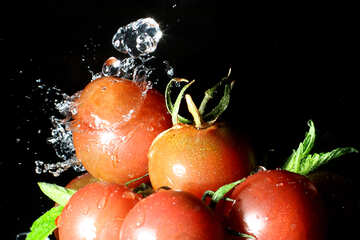 Fresh tomatoes №32880