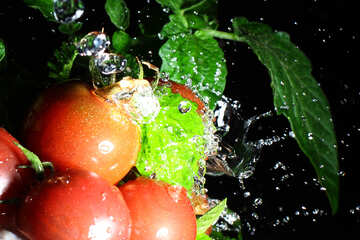 Tomatoes with splashes of water on dark background №32875