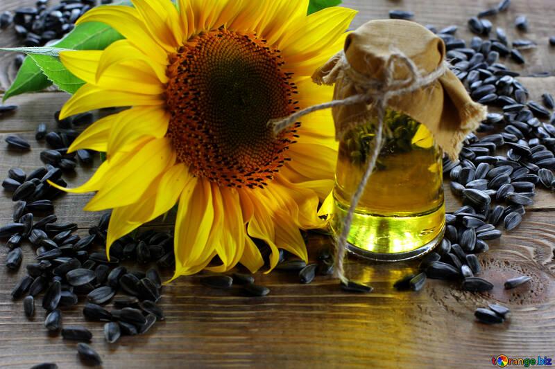 Sunflower №32745