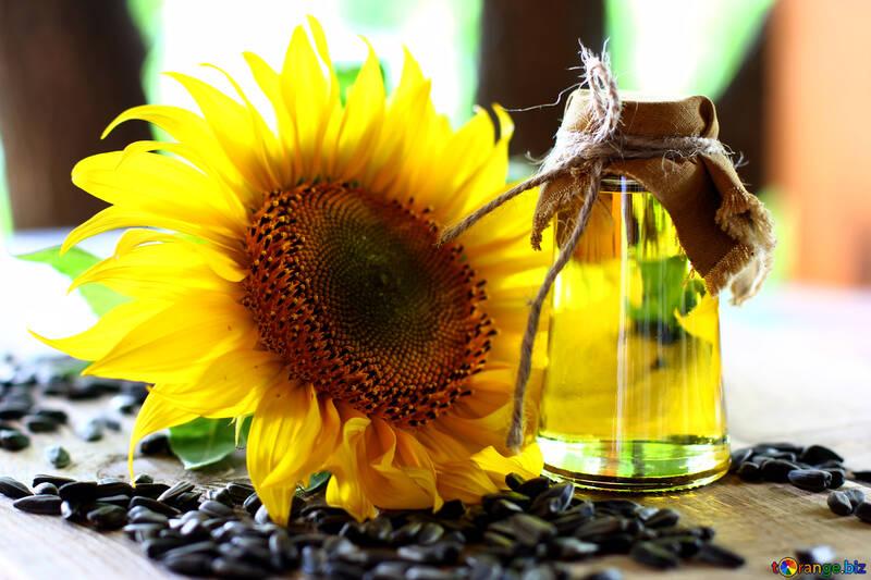 Sonnenblumenöl frischem pflanzenöl sonnenblume № 32729