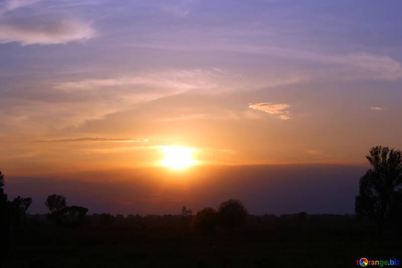 Puesta de sol vivo №32451