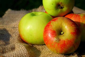 Apple still life №33546