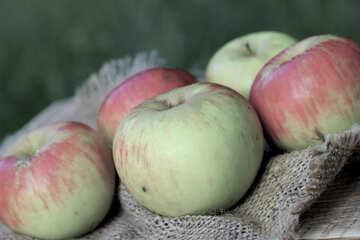 Apples №33570