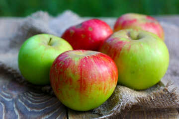 Apples №33575