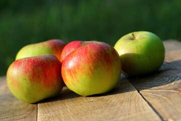 Harvest of apples №33577