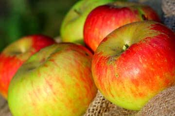 Juicy apples №33562