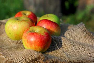 Rural apples №33560