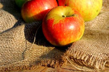 Sweet apples №33556