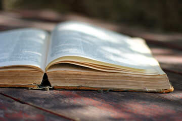 Dictionary №33978