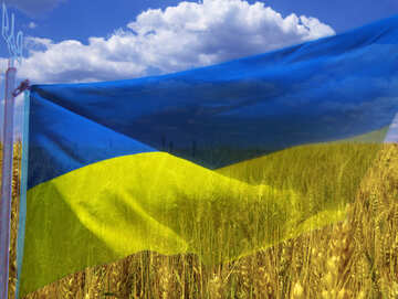 The Flag Of Ukraine №33620